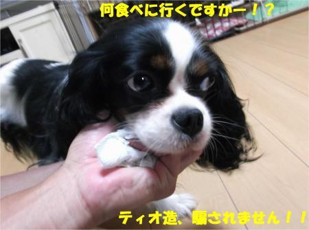 09_convert_20140725193305.jpg
