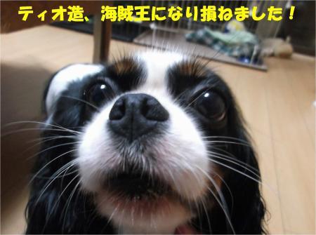 09_convert_20140819175337.jpg