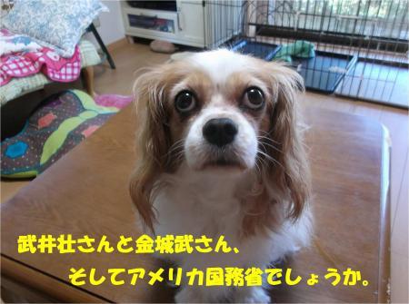 09_convert_20140822180908.jpg