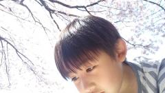 1913482_775493052462317_1998922629_oryousakura.jpg