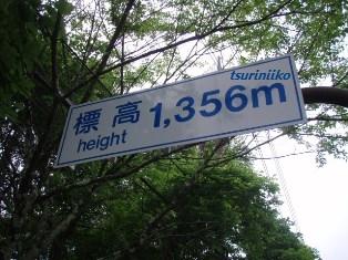 標高1356