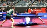 アポローニャVSマテネ 世界卓球2014