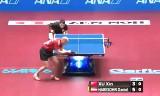 許昕VSハベンソン 世界卓球2014
