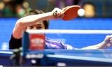 松平健太VSモンテイロ 世界卓球2014