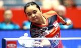 シユンVSスッチ(準々)世界卓球2014
