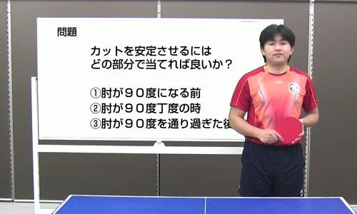 動画大5313