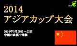 特集:アジアカップ2014