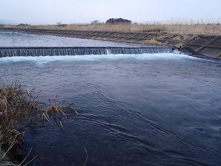 2014保野川下流2