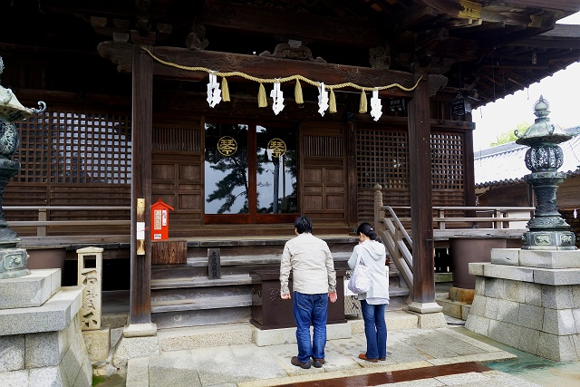 140515-miyagawa-016-S.jpg