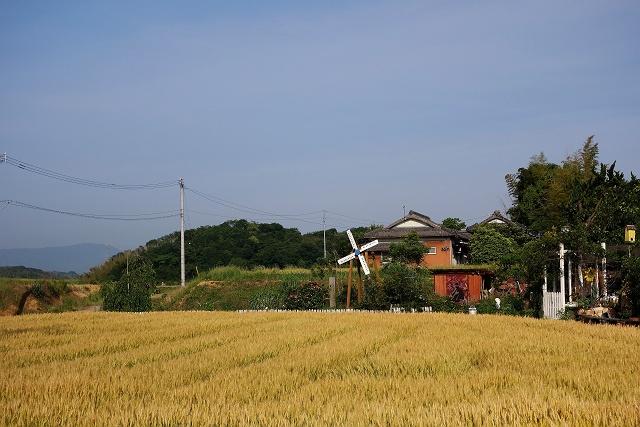140524-yamagoe01-013-S.jpg