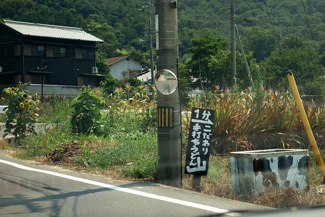 20140726-yama-005-S.jpg