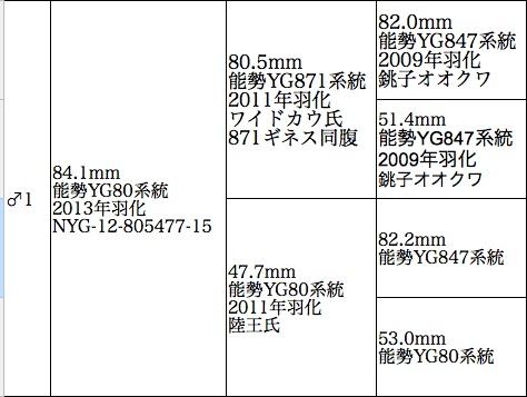 NYG-12-805477-15jpg.jpg