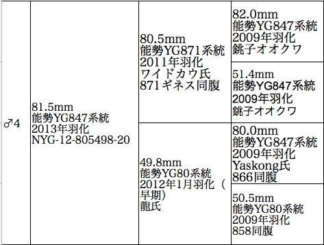 NYG-12-805498-20.jpg