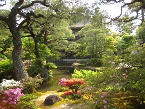 躑躅の咲く池