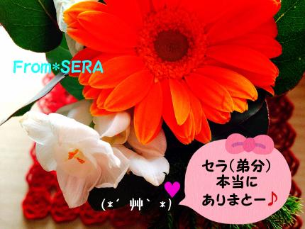 2014_3_23_Thanx_sera03.jpg