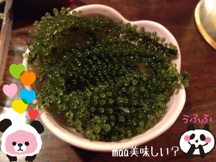 2014_5_13_ya_and_maa03.jpg