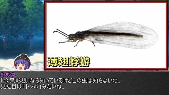 ゆっくり霊夢とやる夫が学ぶ 昆虫大百科 part17