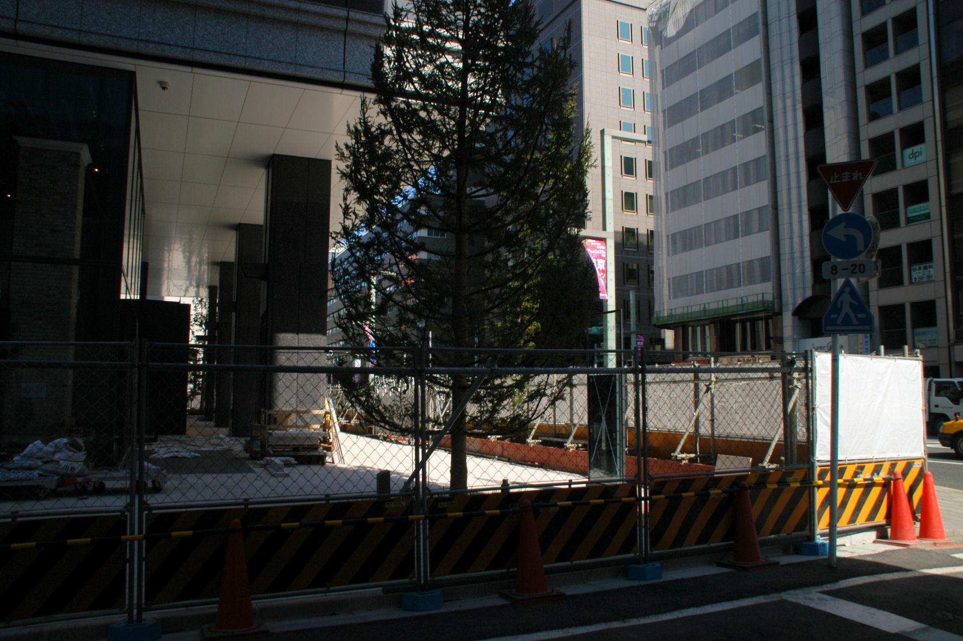 kyobashi14020067.jpg