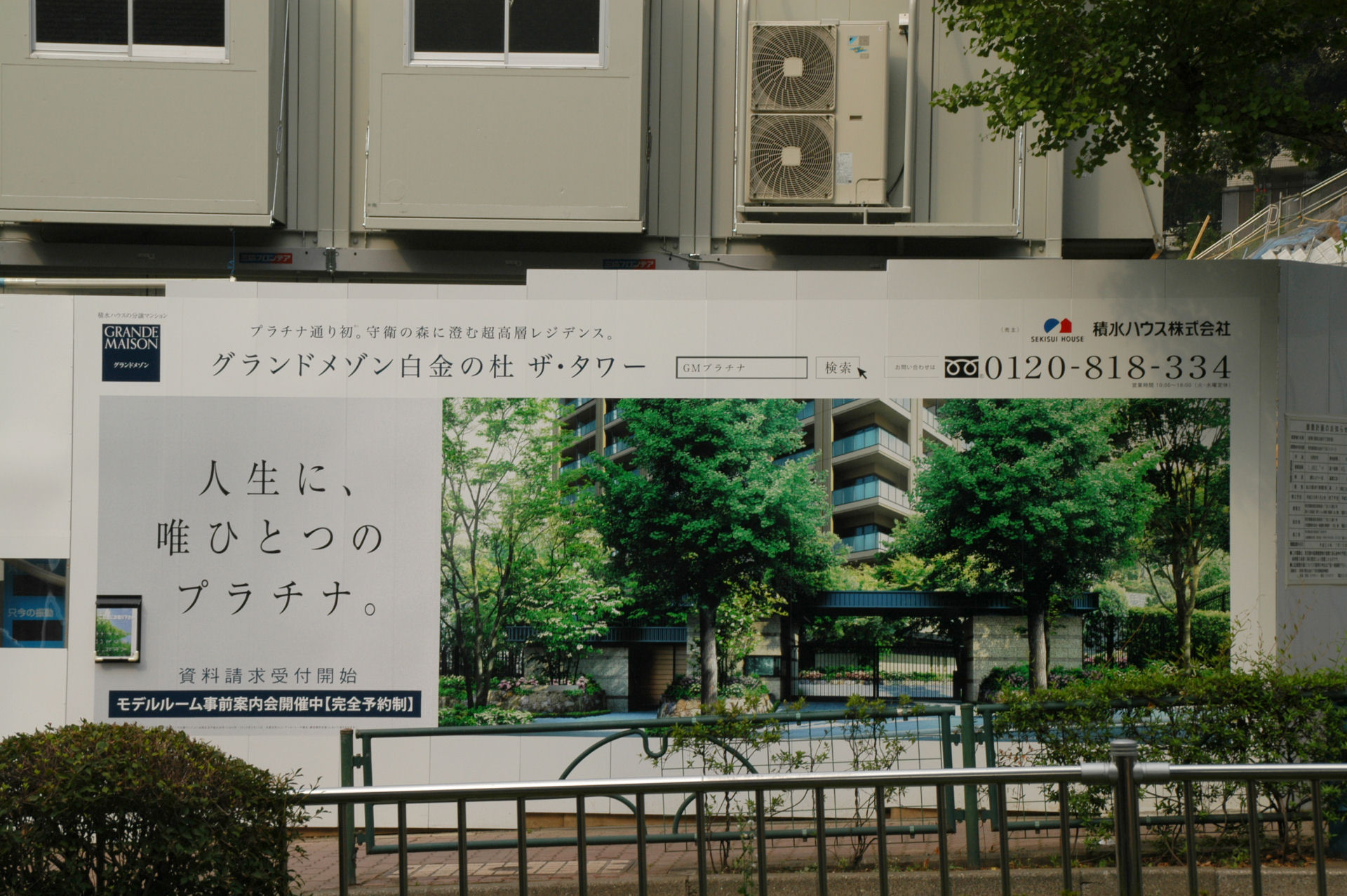shiro13070123e.jpg
