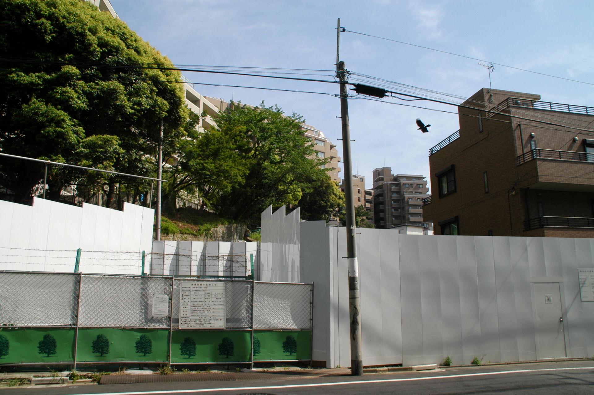 shirok13050093e.jpg