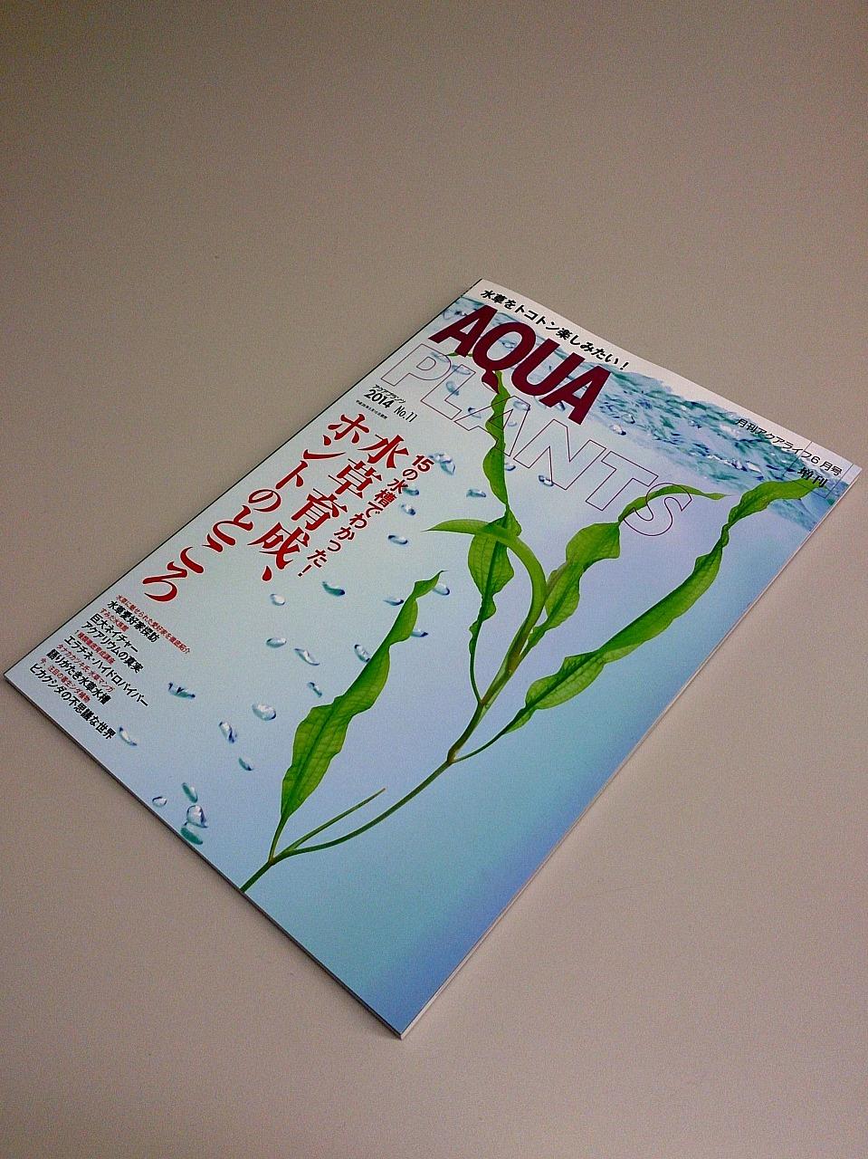 AQUA_PLANTS-No11.jpg