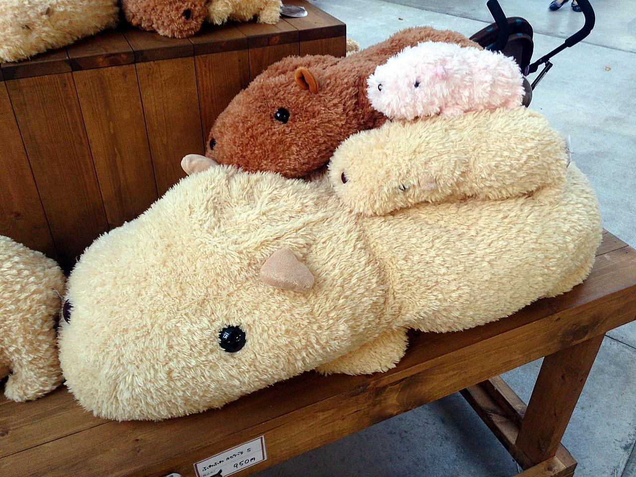 Capybara_20140913-04.jpg