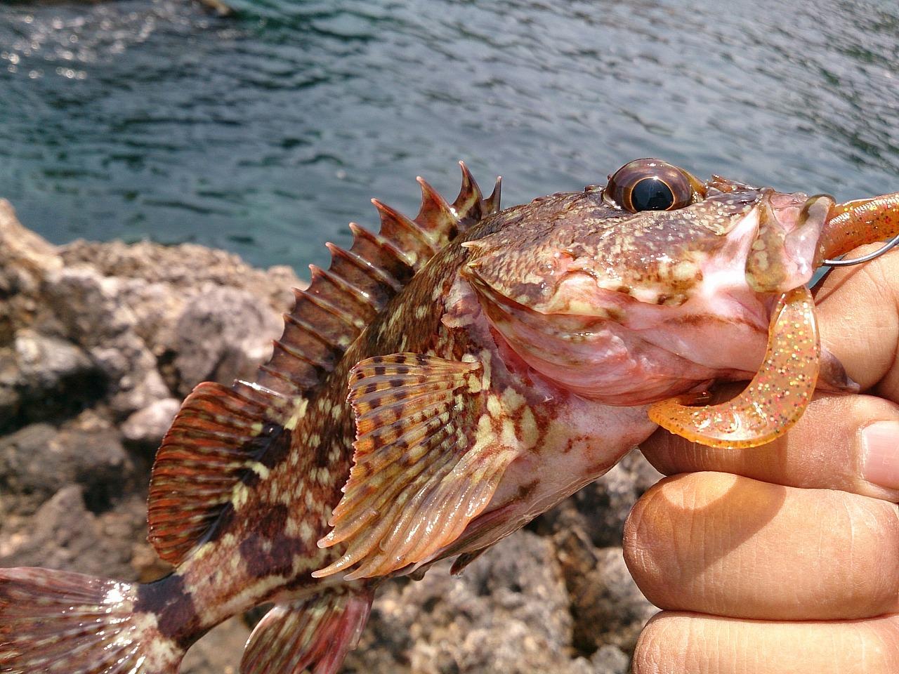 Fishing_20140524-02.jpg
