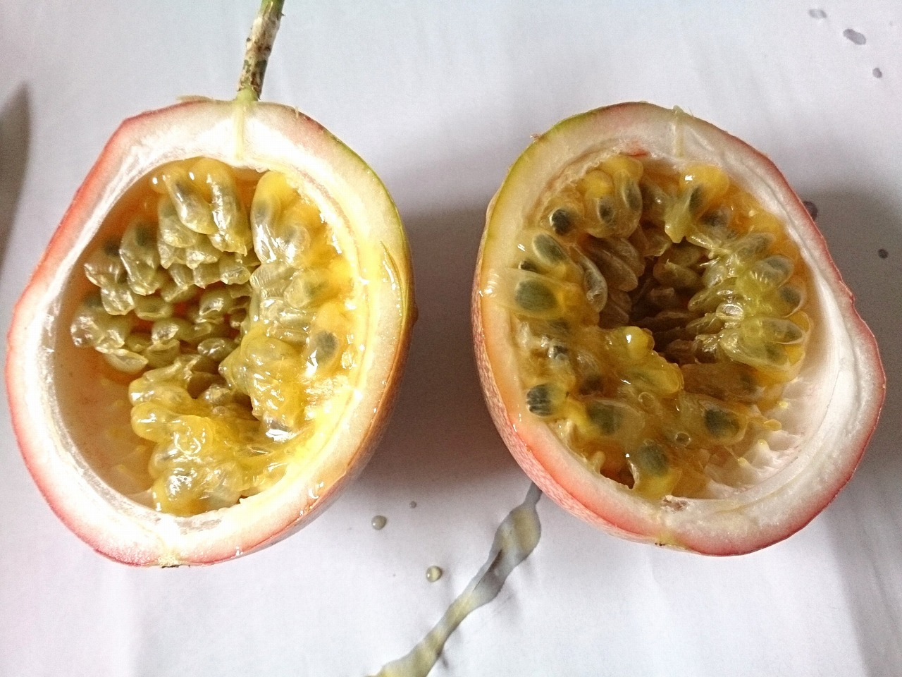PassionFruit_No03_20140802-02.jpg
