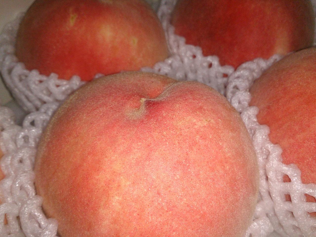 Peach_20140807-04.jpg