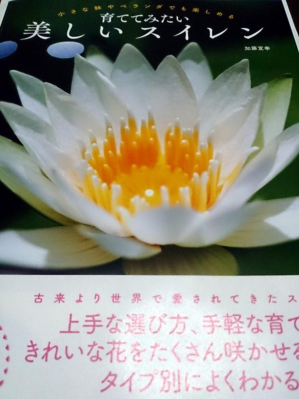 Waterlily-Book.jpg