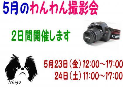 20140504-02.jpg