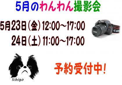 20140516-01.jpg