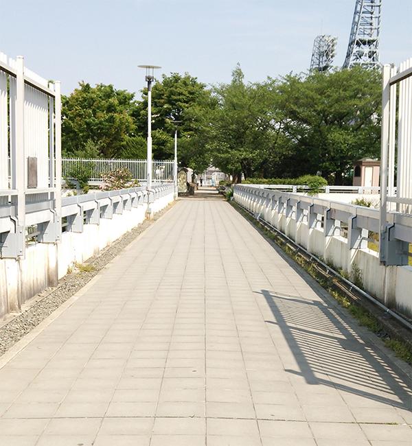 park03.jpg