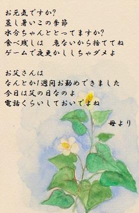 梅雨のたより (2)