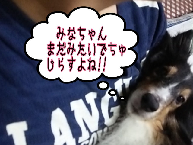 2014-07-20-03-12-15_deco.jpg