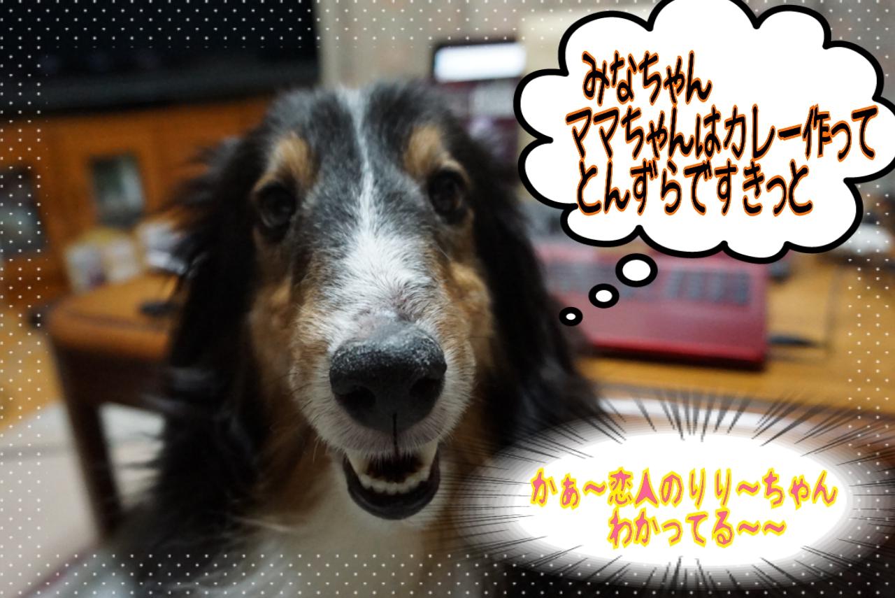 2014-08-06-01-16-10_deco.jpg
