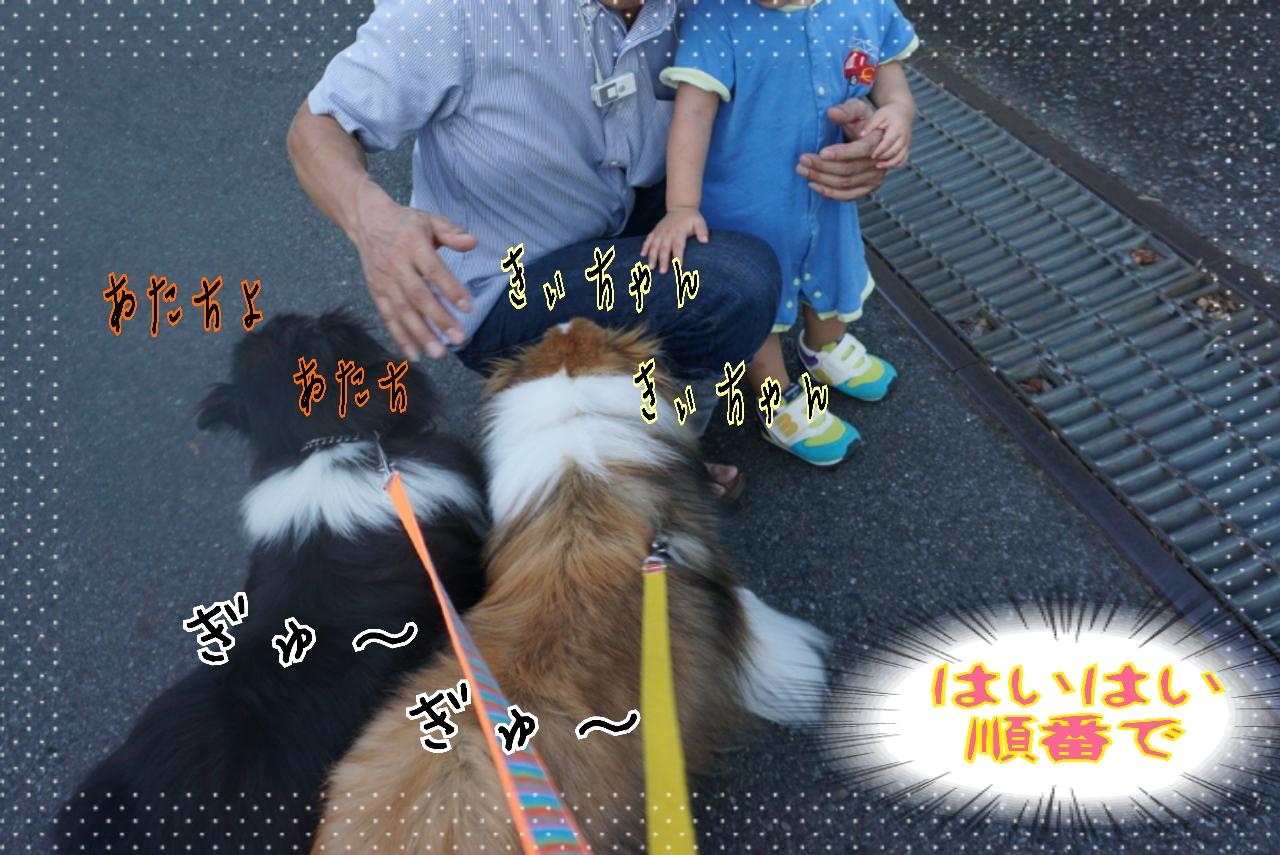2014-08-06-05-42-28_deco.jpg