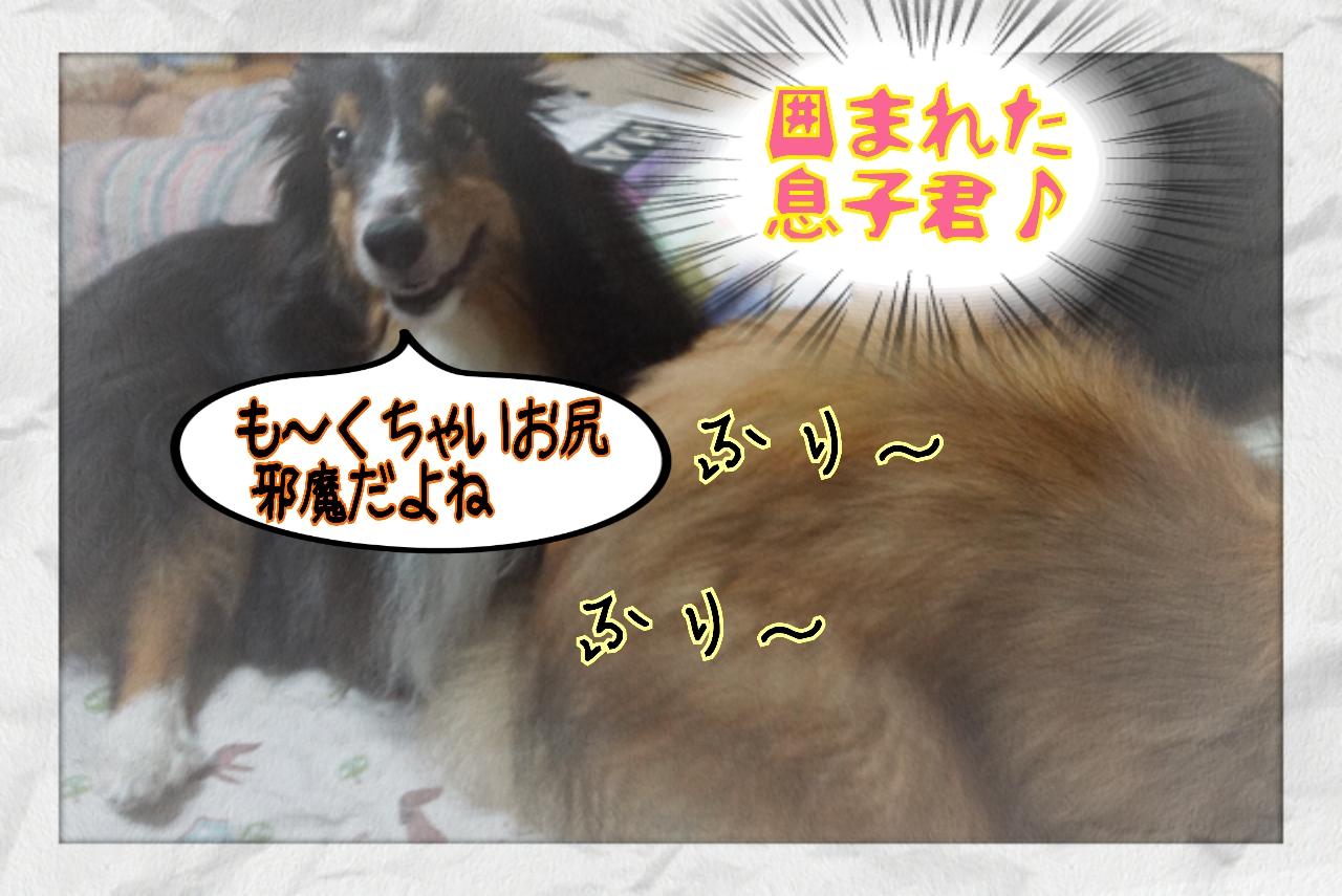 2014-08-09-21-30-01_deco.jpg