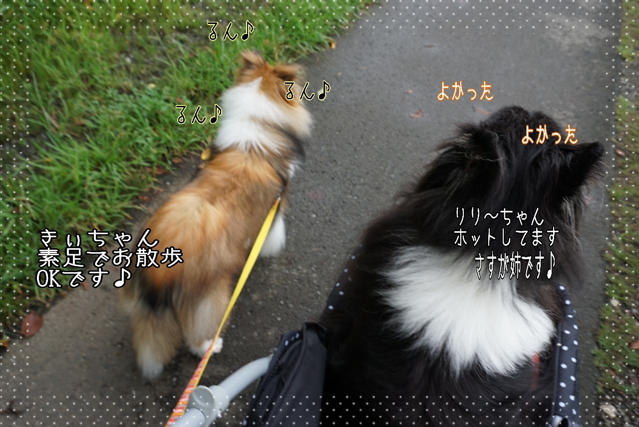 2014-08-29-01-13-11_deco.jpg