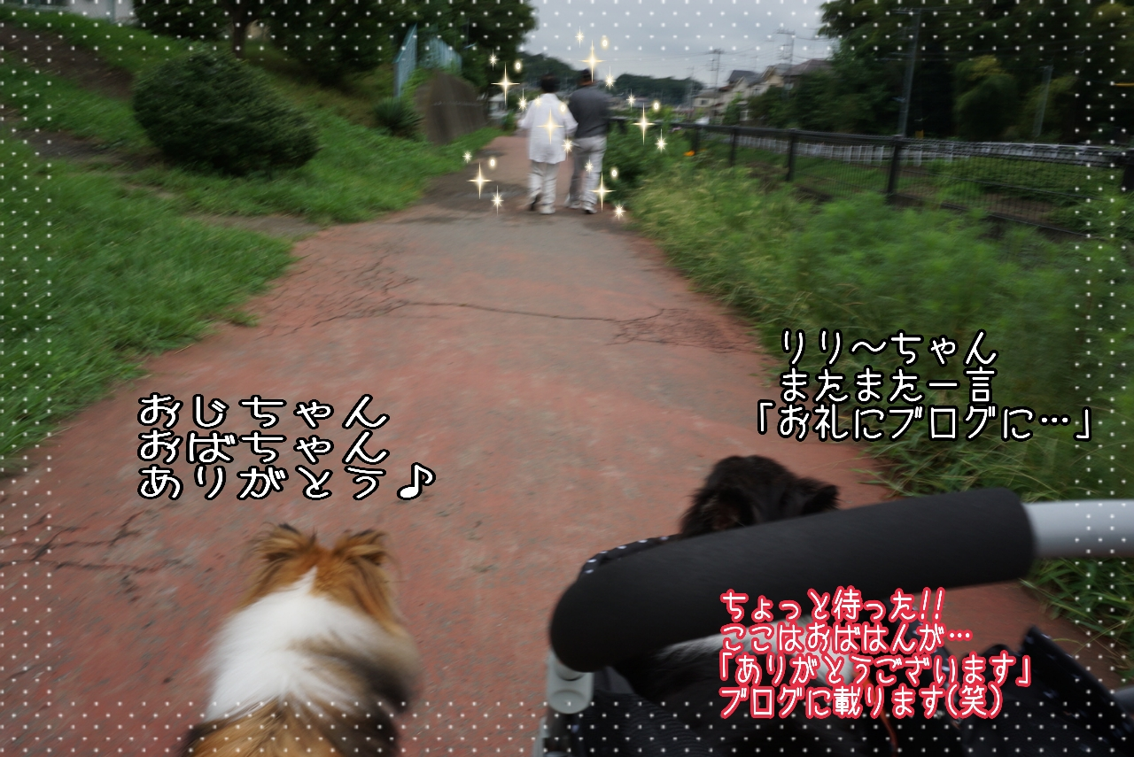 2014-08-29-01-29-22_deco.jpg