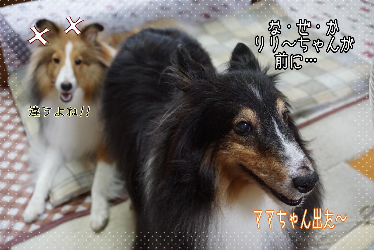2014-08-29-02-09-12_deco.jpg