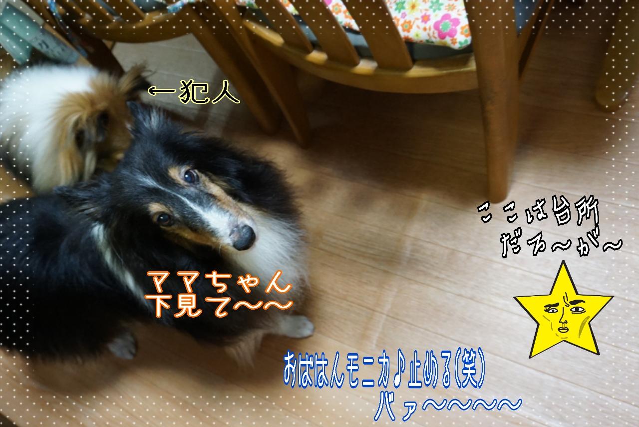 2014-09-06-00-54-53_deco.jpg