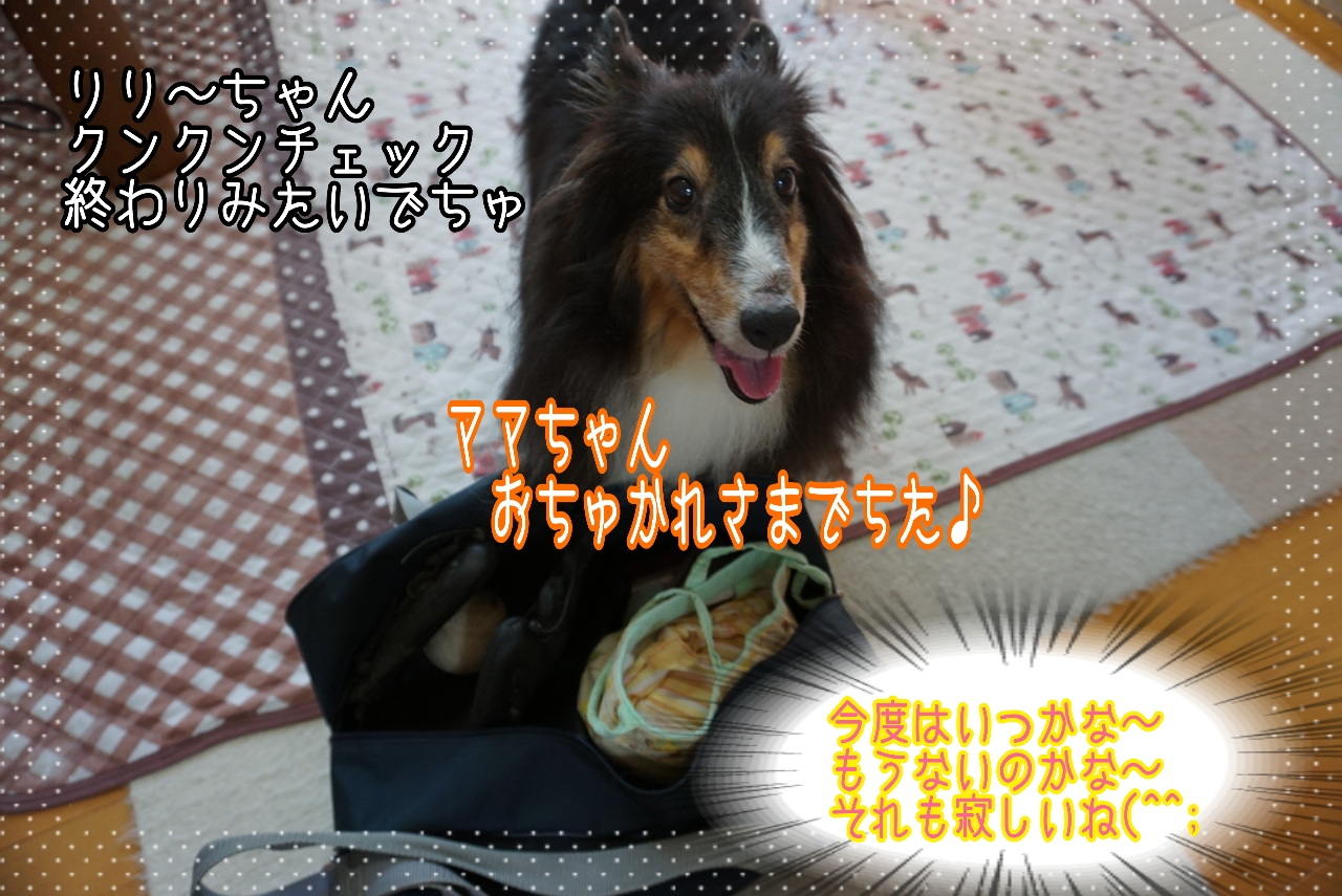 2014-09-06-02-08-30_deco.jpg