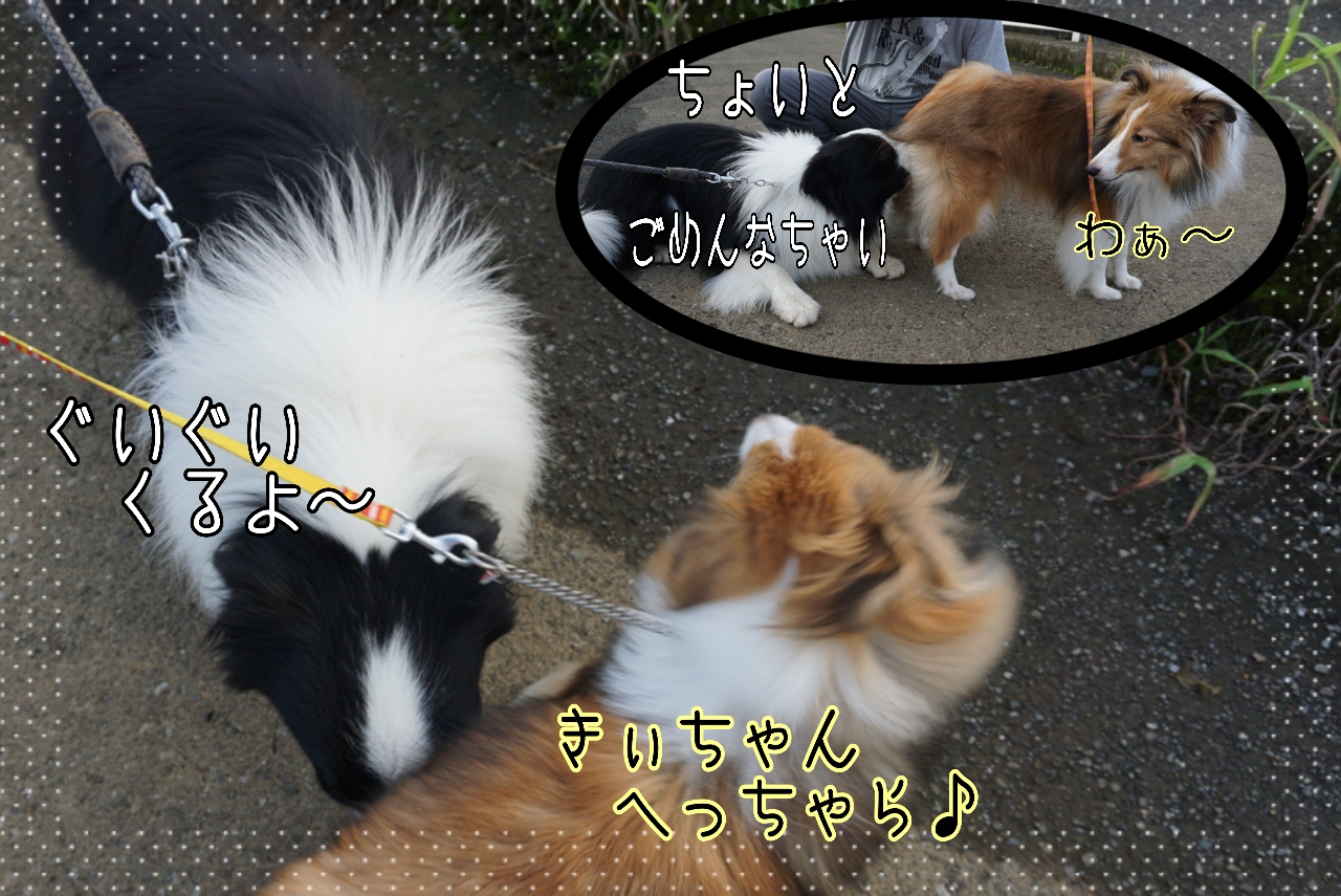 2014-09-08-14-25-51_deco.jpg