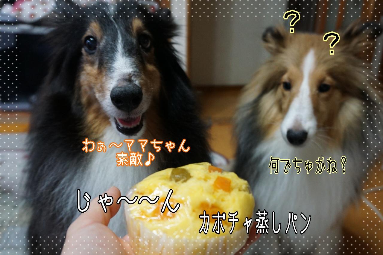 2014-09-09-00-19-39_deco.jpg