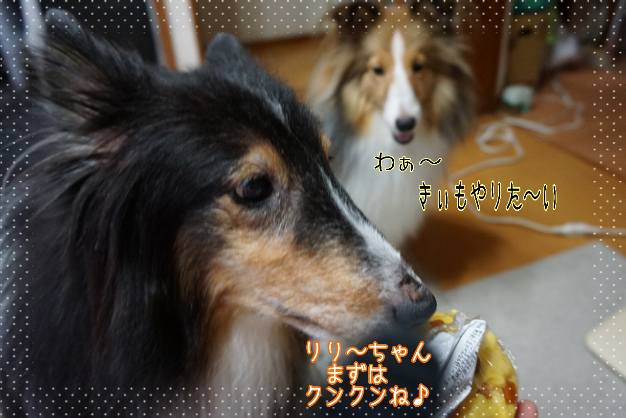 2014-09-09-00-27-07_deco.jpg