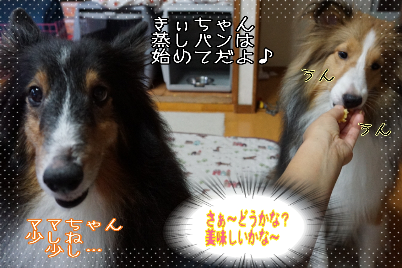 2014-09-09-00-52-07_deco.jpg