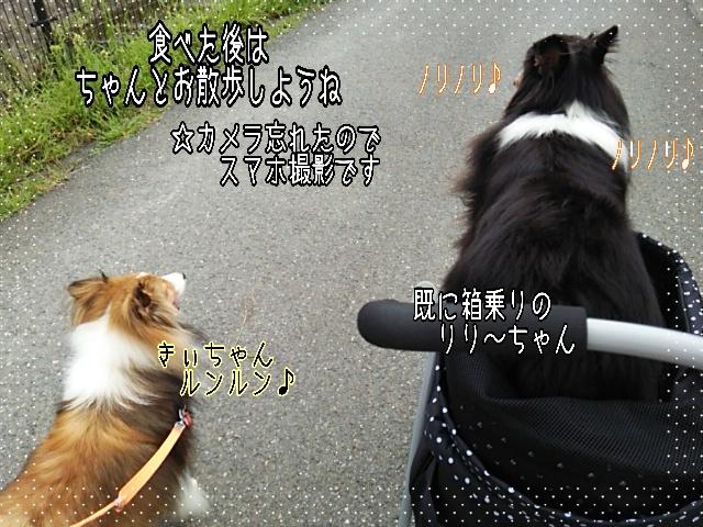 2014-09-09-05-04-36_deco.jpg