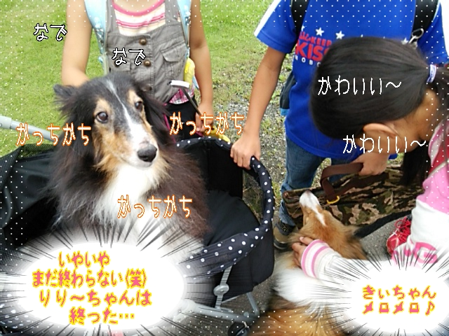 2014-09-09-05-24-09_deco.jpg
