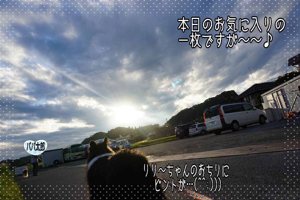 2014-09-09-07-36-09_deco.jpg